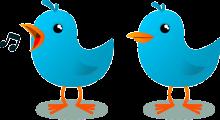 Vögel, blaue Vögel